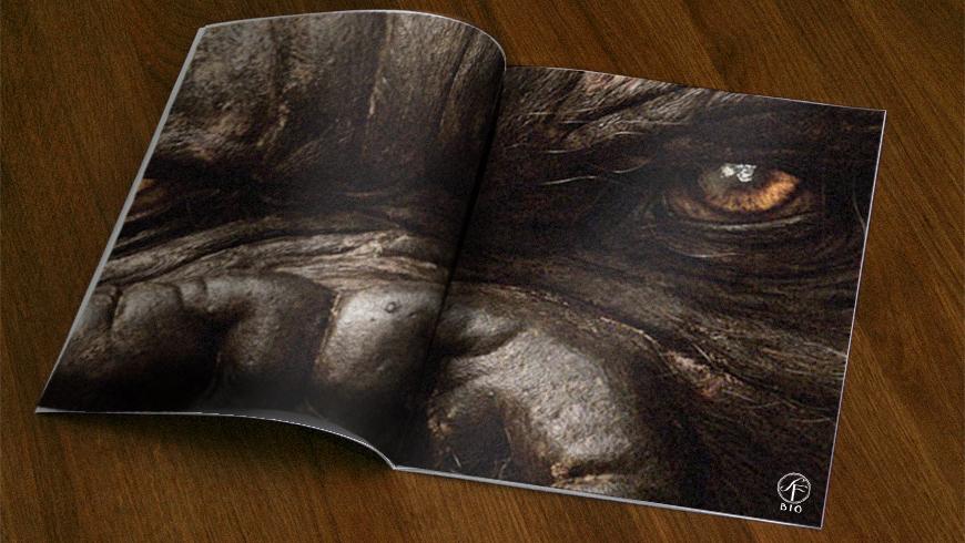 Annons - Magazine
